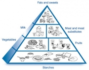Diabetes Food Pyramid - The VItal Tool To Bring Your Diabetes Under Control!