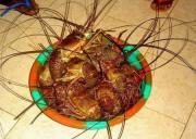 Werid African Snacks