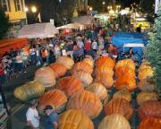 Barnesville Pumpkin Festival - Pumpkins galore