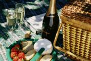 Foods and beverages for picnic