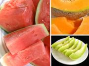 Choosing the right melon