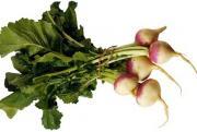 storing-turnips