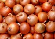 Skyrocketing onion prices have again hit India
