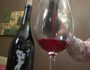 A Brief Guide On Wine Making In Paso Robles