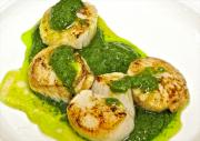Balti Scallops With Coriander Cilantro & Tomato