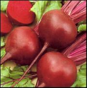 Beetroots are a storehouse of good health
