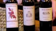Wine Chat TV: Italian Wines