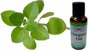 uses of oregano oil