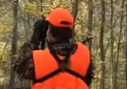How To Hunt Deer