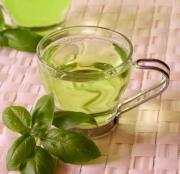 Tea catechins are a potent antioxidant