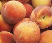 Peach Carving Ideas