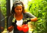Patti Moreno'S Tomato