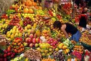Benefits Of Vegetarian Diet