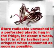 Tips For Buying, Storing And Using Radicchio Lettuce