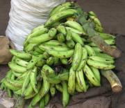 Kerala – the yummy banana chips