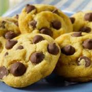 Low Fat Cookies — Low Fat Food