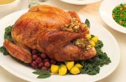 The Stuffed Turkey for the Thanksgiving