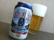 Big Flats 1901 Lager Beer - An Overview