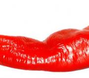 Liver damage is one of the side effects of cayenne