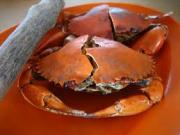 Freeze only cooked crab.