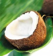 Coconut  Concentrate Health Benefits