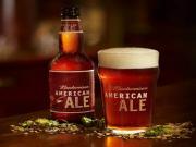 Budweiser American Ale Beer Review Bud Ale