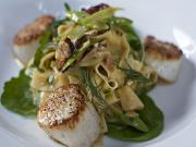 Fettuccine with Scallops and Mushrooms