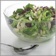 Plastic salad container