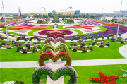 Dubai is home to world's largest natural flower garden