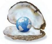 Food security threatened by dwindling oyster numbers.