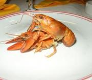 Lobster menu dish