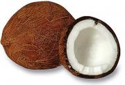 Coconuts are the largets nuts.