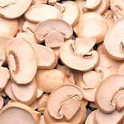 Mushroom Carving Ideas
