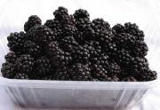 Blackberry Concentrate Health Benefits