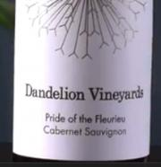 Pride of the Fleurieu 2009 – A Rich Cabernet Sauvignon Wine