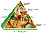 Follow The Food Pyramid For Adults For A Longer Life!