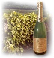 The world famous Jura wine