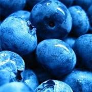 Freezing fresh berries helps you to enjoy this fruit all through the year.