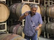 2008 Carneros Pinot Noir Review