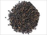 Black Pepper Medicinal Uses -- Black Pepper