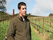 Ground Cover Crops in Spring: Sustainable Vineyard Farming Practices (The Journey Blog 5.20.10)