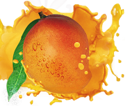 Storing mangoes - tips on how to store mangoes
