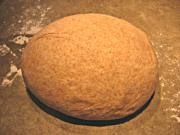 Whole Wheat Pizza Dough in the Bread Machine