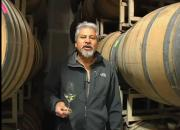 Chardonnay Vintage Winery Review
