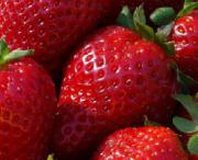 Scientists have cracked the gene codes of Strawberry in hope of developing high yielding hybrids.