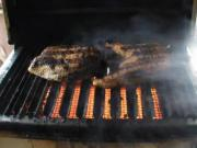 Infrared Grilled Salmon on the Solaire Anywhere Portable Grill