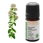 "Oregano oil to fight harmful bacteria - the oil with the ""healthfull"" essence"