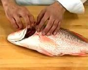 How to Check  the Freshness of Fish