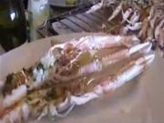 "iCookTV Episode 2: ""Langoustines at the Lake"""