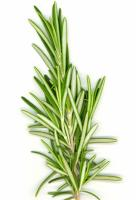 Enjoy rosemary leaf benefits!